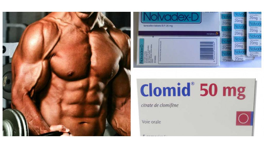 Clomid in bodybuilding for beginners