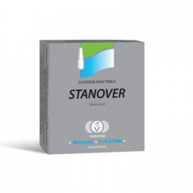 Stanover amp.